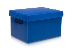 Caixa Organizadora Extra Grande 560x365x300